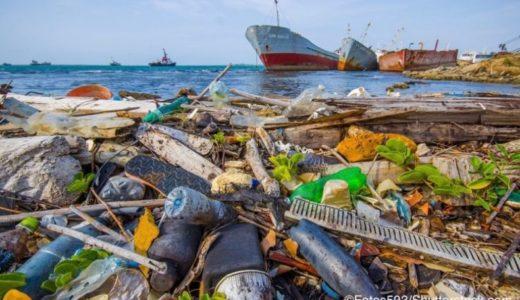 海のプラスチックは分解にどのくらい時間がかかる?