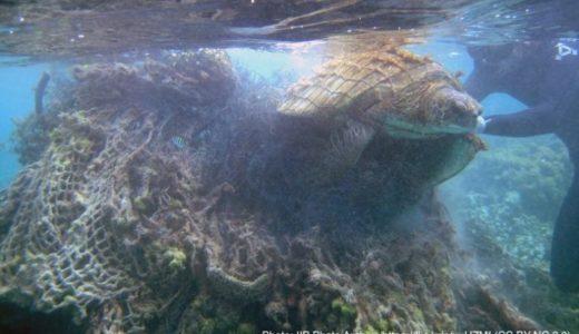 悪魔のゴーストネット−プラスチックごみに絡まる海洋動物