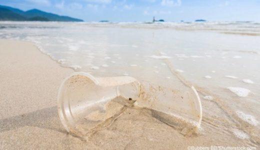海洋ごみ−最大の原因は『使い捨てプラスチック』