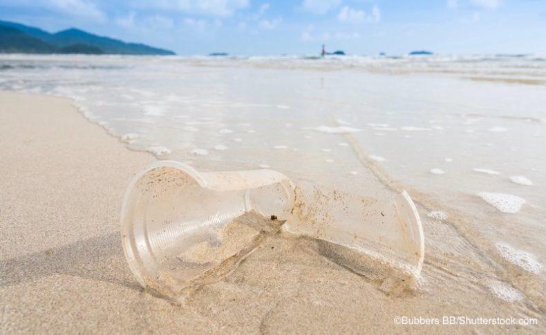 ビーチの上で割れているプラスチックのコップ