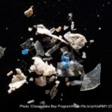 マイクロプラスチック