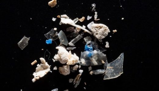 プラスチックごみが海に入ると何が起きる?