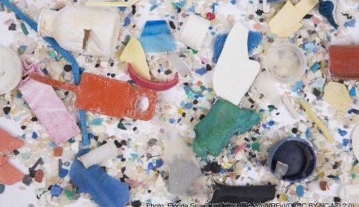 海に浮かんでいるプラスチックごみの量はどのくらい?