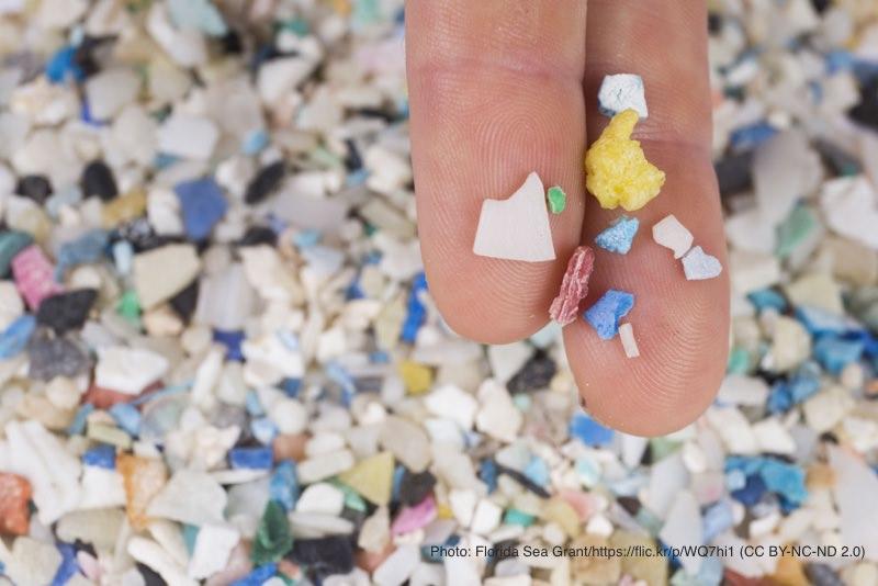 マイクロプラスチックを手に取る