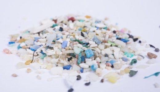 貝の危険回避行動を妨げるマイクロプラスチック
