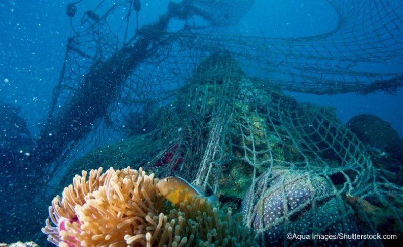 海底に覆い被さるゴーストネット