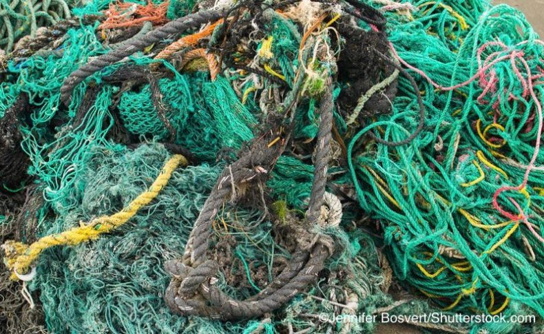 漁網|マイクロプラスチック|問題・影響・原因|海洋汚染|使い捨てプラスチック|プラごみ