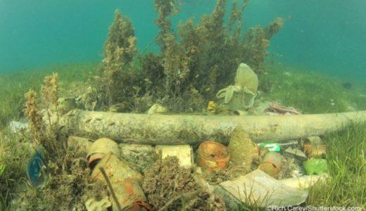 海底が窒息.覆い被さるプラスチックごみ