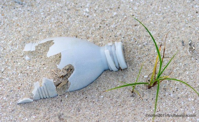 浜辺で劣化しているプラスチック