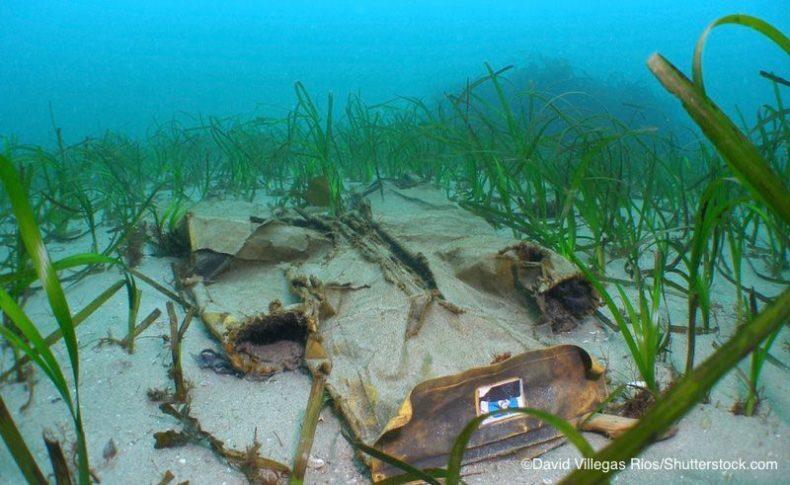 海底を覆い被さるプラスチックごみ