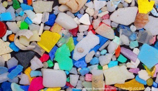 海水中でプラスチックから溶出する化学物質が危ない