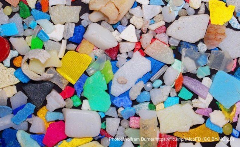 海洋マイクロプラスチック