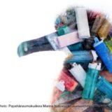 海鳥と使い捨てライター