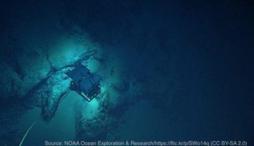 世界最深!マリアナ海溝からプラスチックと高濃度の汚染物質