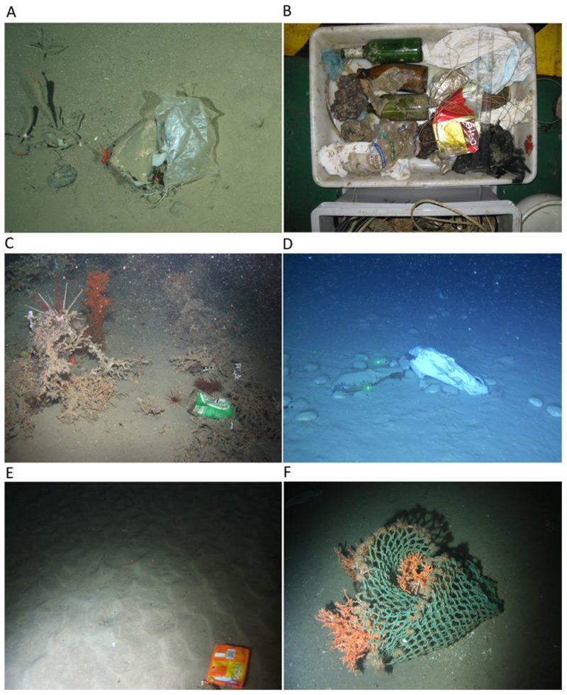 海底でみつかるプラスチックごみ