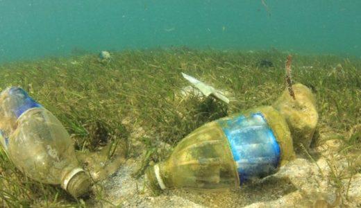 プラスチックごみは海のどこに行く?