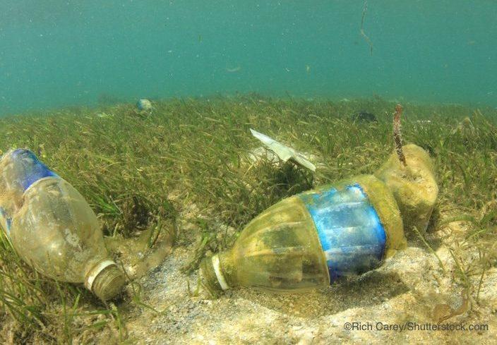 海底に沈むペットボトル