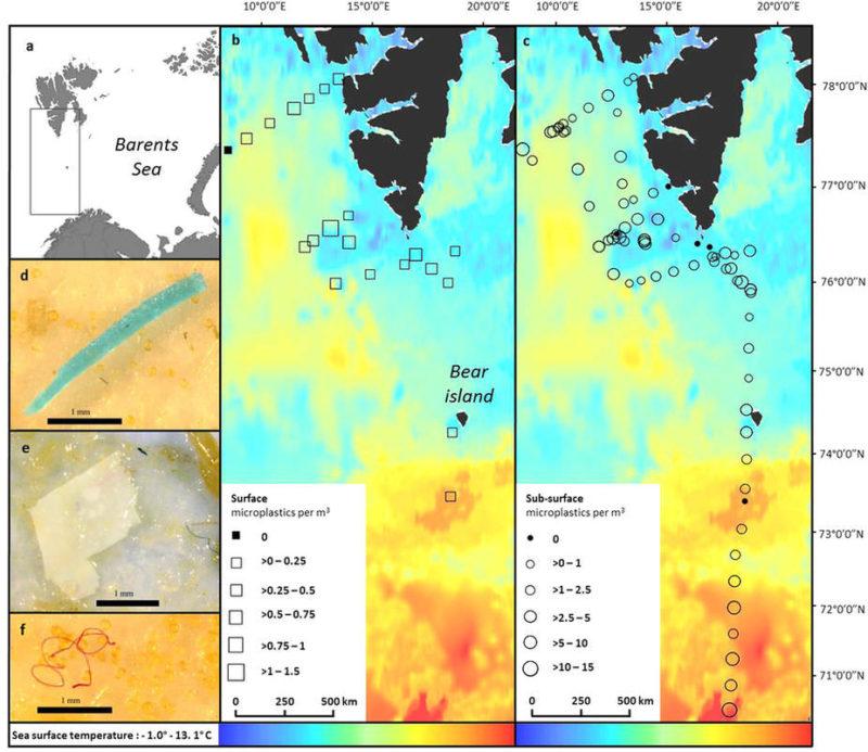 北極のマイクロプラスチックの分布