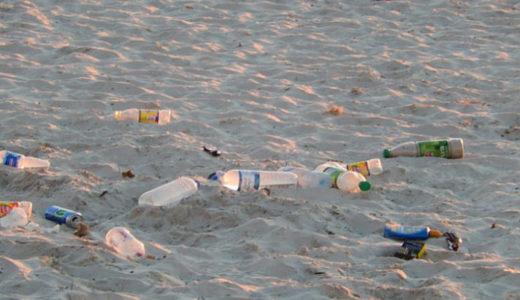 プラスチックごみを海から除去できるのか?