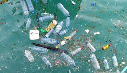 海洋プラスチックごみの総量ってどれくらい?