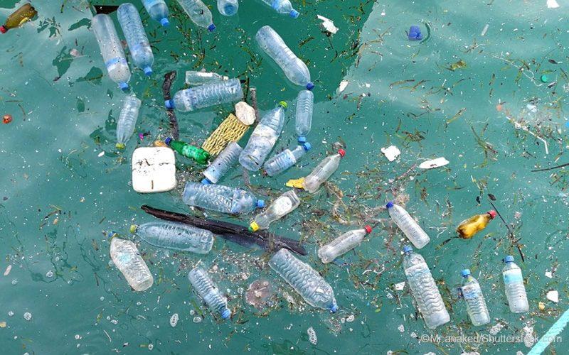 海に浮かぶペットボトル