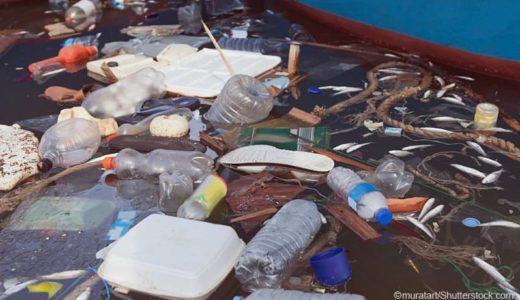 プラスチックの添加剤が海の生態系を脅かす