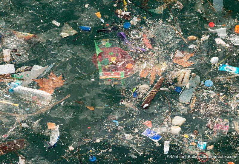 海プラごみ|マイクロプラスチック|問題・影響・原因|海洋汚染|使い捨てプラスチック|プラごみ