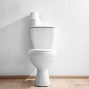 簡単にゴミにしない!自然素材のトイレブラシを長く清潔に使おう