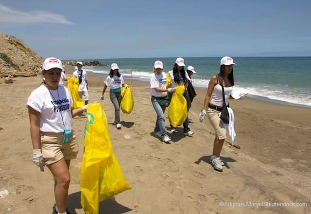 海岸清掃活動する様子