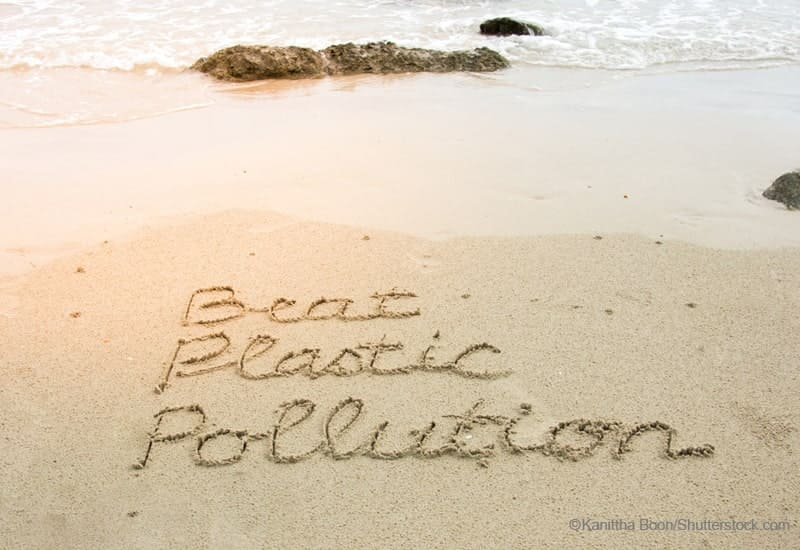 beat plastic pollutionと書かれた砂浜