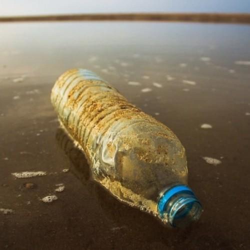 ビーチのペットボトルごみ