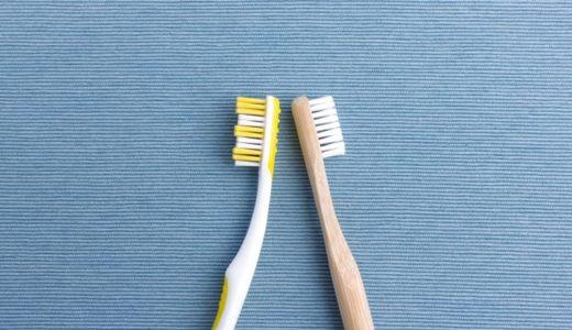 プラ製の歯ブラシにはもう戻れない!馬毛&竹歯ブラシを使ってみました