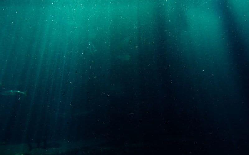 深海のイメージ図
