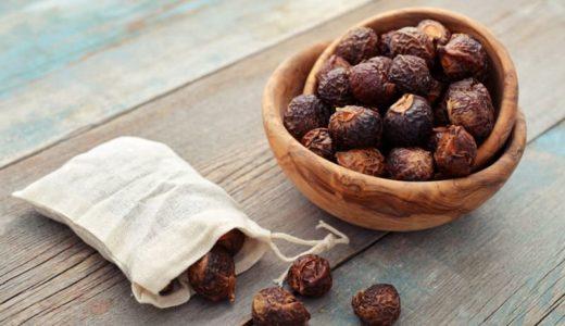 木の実の洗剤「ソープナッツ」 手肌にやさしく自然に還るエコ洗剤