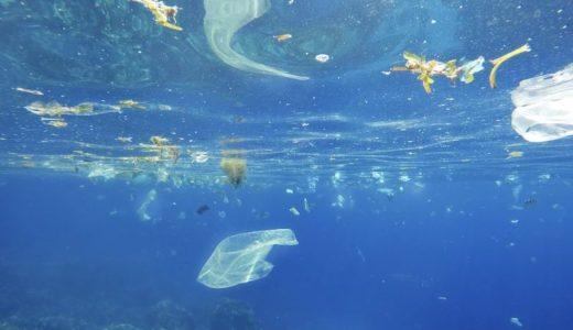 """集めたゴミがまた海に?海ごみ回収装置 """"Wilson"""""""