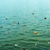 海に浮かぶプラごみ