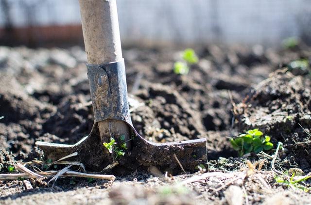 シャベルで土を耕す様子
