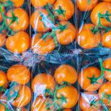 プラスチックに包まれるトマト