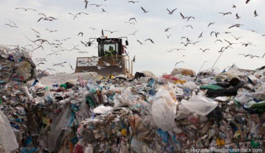 世界でプラスチックのリサイクル率が低い5つの理由&日本の現状
