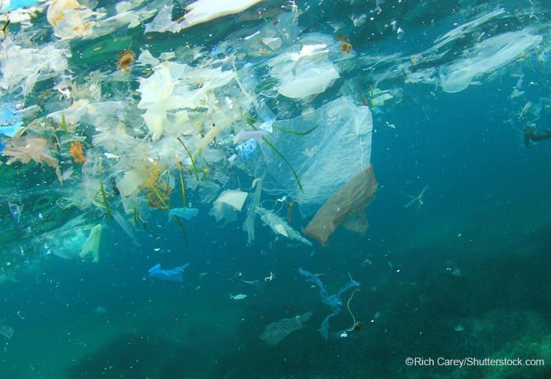 海中に浮遊するプラスチックごみ