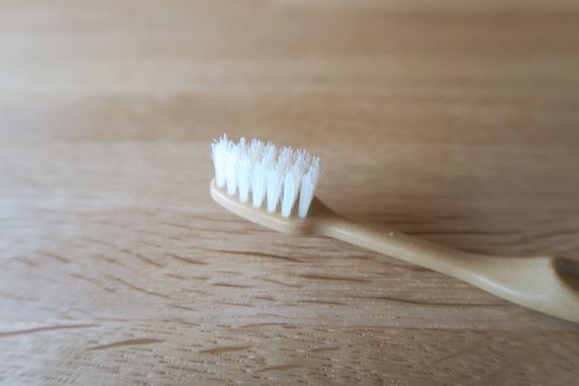 ファインの竹歯ブラシのヘッド部分