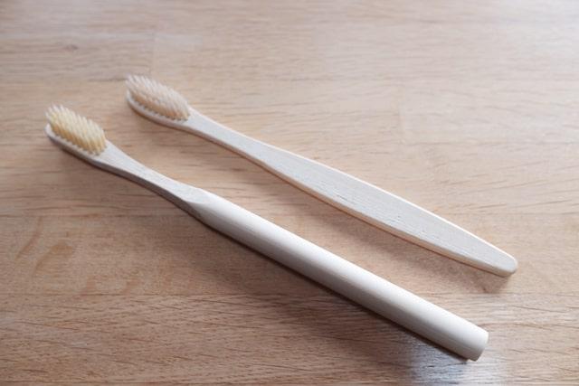 バリイズムの2種類の竹歯ブラシ