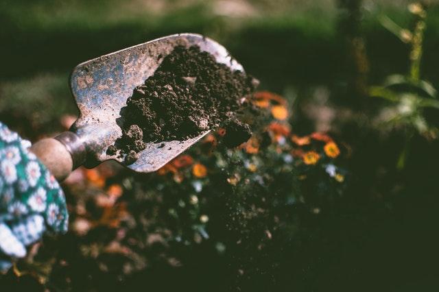 土をスコップで掘っている様子
